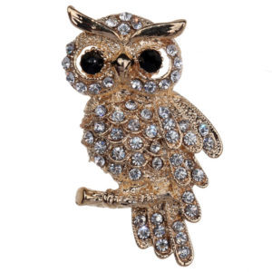 Fashion-Gold-Plated-Owl-Style-Shiny-Crystal-Inlay-Lady-Jewelry-Rhinestone-Brooches-For-Weddings.jpeg